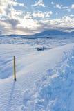 Indicatore del bordo della strada in neve Fotografia Stock