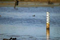 Indicatore di profondità dell'acqua Fotografia Stock Libera da Diritti