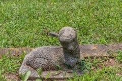 Indicatore grave dell'agnello fotografie stock