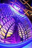 Indicatore luminoso al neon Immagine Stock