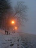 Indicatore luminoso attraverso nebbia Fotografie Stock Libere da Diritti