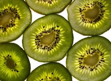 Kiwi Light Immagini Stock Libere da Diritti