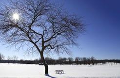 Indicatore luminoso del sole di inverno Fotografie Stock