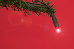 Indicatore luminoso dell'albero di Natale Immagine Stock Libera da Diritti
