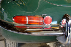 Indicatore luminoso della coda del giaguaro fotografia stock libera da diritti