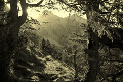 Indicatore luminoso di alba sul rilievo della montagna Fotografie Stock Libere da Diritti