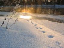 Indicatore luminoso di inverno Fotografia Stock Libera da Diritti