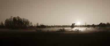 Indicatore luminoso di mattina Fotografie Stock Libere da Diritti
