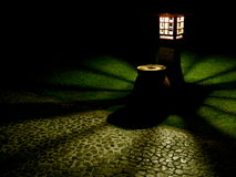 Indicatore luminoso di notte del giardino botanico Immagini Stock Libere da Diritti