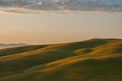 Indicatore luminoso di primo mattino in Toscana Immagini Stock Libere da Diritti