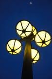 Indicatore luminoso di via alla notte Immagini Stock