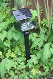 Indicatore luminoso solare del giardino Immagine Stock