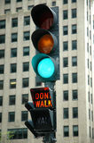 Indicatore luminoso verde - non cammini Immagine Stock