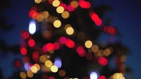 Indicatori luminosi Defocused dell'albero di Natale stock footage