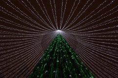 Indicatori luminosi dell'albero di Natale immagini stock