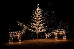 Indicatori luminosi dell'iarda di natale Fotografia Stock
