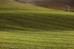 Indicatori luminosi di Andalusia Immagini Stock