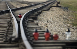 Indicatori luminosi di ricordo a Auschwitz Immagini Stock Libere da Diritti