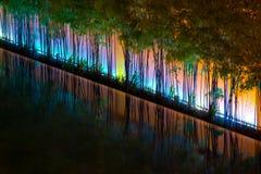 Indicatori luminosi psichedelici su bambù Fotografia Stock