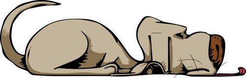 Indicazione del cane Fotografia Stock Libera da Diritti