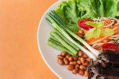 Indicus Lethocerus и зеленый салат папапайи, Стоковые Изображения RF