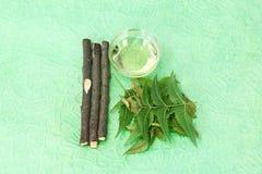 Indien Ayurvedic Neem et huile, Indien Ayurvedic photographie stock
