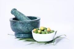 Indien Ayurvedic Neem et huile, Indien Ayurvedic photo libre de droits