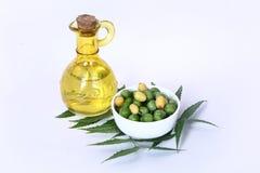 Indien Ayurvedic Neem et huile, Indien Ayurvedic images stock