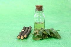 Indien Ayurvedic Neem et huile, Indien Ayurvedic image stock