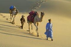 Indien de caravane de 3 chameaux Photographie stock