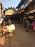 Indien gator Royaltyfri Bild