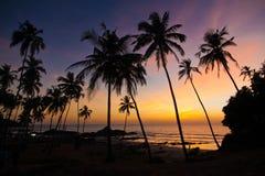 Indien - Goa - Vagator royaltyfria bilder