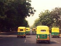 Indien gröngölingar Royaltyfri Bild