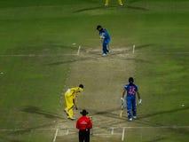 Indien kontra Australien syrsa Arkivfoto