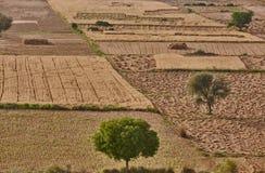 Indien-Landschaft Lizenzfreies Stockbild