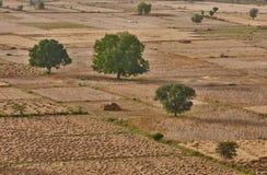 Indien-Landschaft Stockfoto