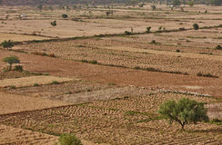 Indien-Landschaft Stockfotografie