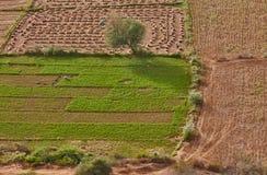 Indien-Landschaft Lizenzfreie Stockbilder