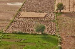 Indien-Landschaft Stockbild