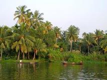 Indien Tropischer Wald der Palme in den Stauwasserreisezielen von KE stockfotos