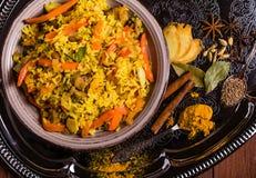 Indier Biryani med höna och kryddor arkivfoto