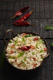 Indier Curd Rice royaltyfri bild