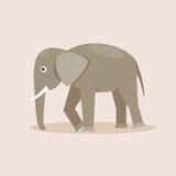 indier för illustration för tecknad filmelefant rolig också vektor för coreldrawillustration Arkivfoto