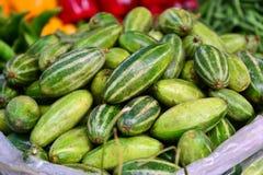 Indier grönsak-pekad kalebass som är parwal arkivfoto
