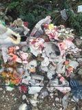 Indier kraschad murti royaltyfria foton