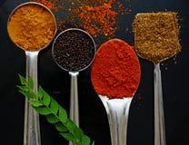 Indiern grundade kryddor Fotografering för Bildbyråer