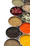 Indiern kryddar samlingen Arkivfoto