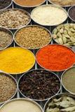 Indiern kryddar samlingen royaltyfri foto