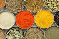 Indiern kryddar samlingen Arkivfoton