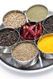 Indiern kryddar samlingen Arkivbilder
